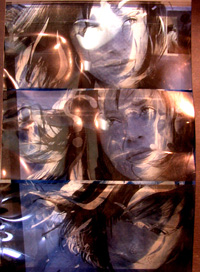 Cyanotypes 2003